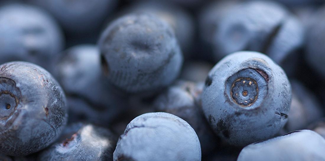 askim frukt og bær